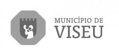 cÂMARA MUNICPAL DE VISEU